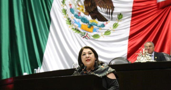 Prioritaria la Seguridad y Estabilidad de los Mexicanos, después para los Migrantes: Diputada Adriana Lozano