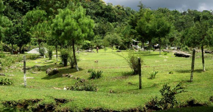 Protege Gobierno de Tamaulipas  las áreas naturales (ANPS)